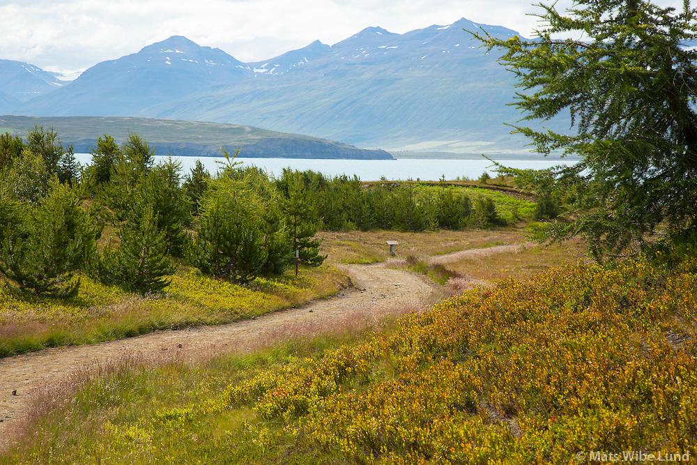 Hrísey   /    Hrisey now belongs to Akureyri.  Viewing west towards Arskogsstrond,  Eyjafjordur