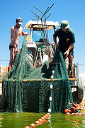 Israel, Coastal Plains, Kibbutz Maagan Michael, Harvesting fish from an intensive growing pool collecting the net after collecting the fish.