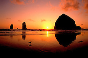 Image of Haystack Rock with seagulls at Cannon Beach, Oregon, Pacific Northwest