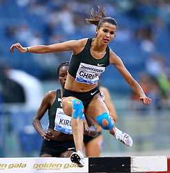 May 31, 2018 - Rome, Italy - Habiba Ghribi (TUN) competes in 3000m Steeplechase women during Golden Gala Iaaf Diamond League Rome 2018 at Olimpico Stadium in Rome, Italy on May 31, 2018. (Credit Image: © Matteo Ciambelli/NurPhoto via ZUMA Press)
