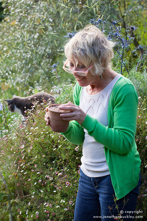 Carol Klein inspecting freshly germinated seeds of Pulsatilla vulgaris