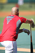 ANAHEIM, CA - JULY 26:  Albert Pujols #5 of the Los Angeles Angels of Anaheim looks on during batting practice before the game against the Detroit Tigers at Angel Stadium on Saturday, July 26, 2014 in Anaheim, California. The Angels won the game in a 4-0 shutout. (Photo by Paul Spinelli/MLB Photos via Getty Images) *** Local Caption *** Albert Pujols