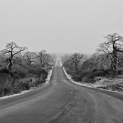 Reconstrução de estradas interurbanas. Estrada Caxito > Dondo (Julho de 2017)