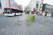Met een hele speciale fiets rijdt een man met een enorme boomtak door het centrum van Nijmegen. In Nijmegen vindt voor de derde keer het International Cargo Bike Festival plaats. Het tweedaags evenement richt zich op het gebruik en de gebruikers van bakfietsen. Bakfietsen worden in heel Europa steeds vaker ingezet, zowel door particulieren als bedrijven. Het is een duurzame vorm van transport en biedt veel voordelen.<br /> <br /> In Nijmegen for the third time the International Cargo Bike Festival is hold. The two-day event focuses on the use and users of cargobikes. Cargo bikes are increasingly being deployed across Europe, both individuals and businesses. It is a sustainable form of transport and offers many advantages.