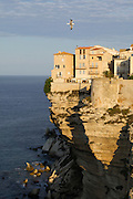 Bonifacio's Ville Haute on top of the chalky limestone cliffs.