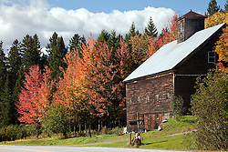 A barn snuggles into the fall color landscape, area of Errol, New Hampshire in New England.