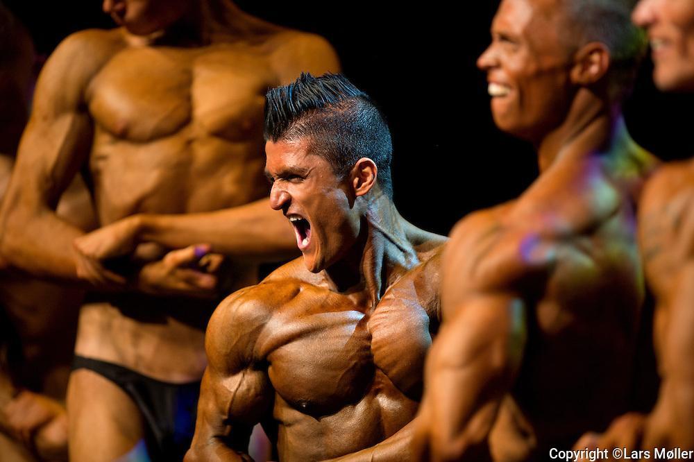 DK caption:<br /> Herning, Danmark, 20131005: <br /> DM i Bodybuilding i Herning Kongrescenter/MCH<br /> Foto: Lars M&oslash;ller<br /> UK Caption:<br /> Herning, Denmark, 20131005: <br /> Danish Championships in Bodybuilding in Herning Congrescenter/MCH<br /> Photo: Lars Moeller