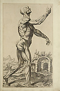 "Male full body side view woodcut print at the opening of the Human Anatomy book ""Notomie di Titiano"" Printed in Italy in 1670"