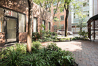 Courtyard at 63 Downing Street