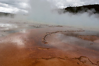 Mats of brightly coloured bacteria, Midway Geyser Basin, Yellowstone National Park, Wyoming, USA   Photo: Peter Llewellyn