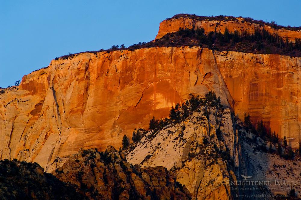 Sunrise light on the West Temple, Zion Canyon, Zion National Park, Utah