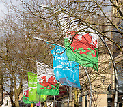 Welcome to Cardiff flags flying in city centre street, The Hayes, Cardiff, South Wales, UK - Bienvenue a Cardiff, red dragons