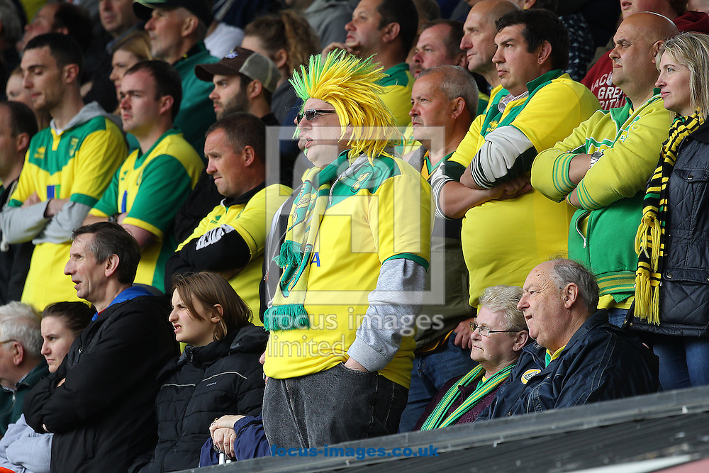 The traveling Norwich fans look tense during the Sky Bet Championship play off semi final first leg at Portman Road, Ipswich<br /> Picture by Paul Chesterton/Focus Images Ltd +44 7904 640267<br /> 09/05/2015