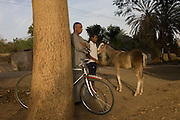 A local man and young Egyptian boy with his foal in the village of Bairat on the West Bank of Luxor, Nile Valley, Egypt.