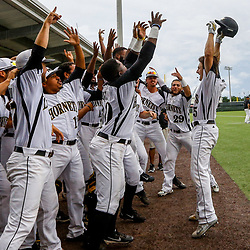 Alabama State outfielder Cage Cox (5) celebrates with teammates after hitting a solo homerun against the Texas Southern to tie the game at 2-2 during the bottome of the sixth inning of the SWAC baseball championship final in New Orleans, La. Sunday, May 21, 2017.