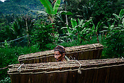 A farmer carrying hand made banana leaf coverings that are used to construct the top of roofs in the village.