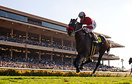 Acclamation with Joel Rosario up wins the Eddie Read Handicap At Del Mar July 23, 2011. Credit: Alex Evers/EquiSport Photos