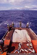 Aku Fishing, Oahu<br />