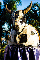 Fantasia de boi utilizada no Boi de Mamão, uma das manifestações folclóricas mais tradicionais de Florianópolis, em Sambaqui. Florianópolis, Santa Catarina, Brasil. / Bull costume used in Boi de Mamao, a traditional interactive play that belongs to Brazilian folklore, in Sambaqui, at Santo Antonio de Lisboa district. Florianopolis, Santa Catarina, Brazil.