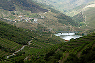 The Douro river valley wine region is the oldest in the world. It's were  famous Port wine is produced  and its landscape was declared Unesco World Heritage. The Douro river is born in Spain and reaches its mouth in Oporto city. MAXIMUM QUALITY AVAILABLE
