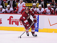 Feb. 6 2012; Glendale, AZ, USA; Detroit Red Wings against the Phoenix Coyotes  at Jobing.com Arena. Mandatory Credit: Jennifer Stewart-US PRESSWIRE.