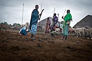 Tana Delta: Kenya, 2013