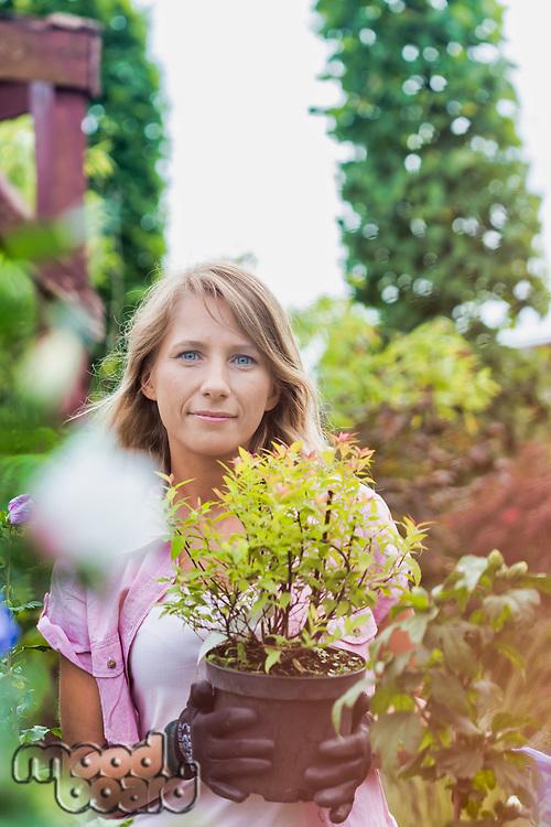 Portrait of beautiful gardener carrying flower pot