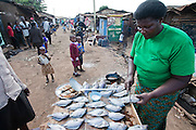 Roseline Amondi, a microloan recipient and mother of four, prepares tilapia for sale in the Kibera slum in Nairobi, Kenya.   (Roseline Amondi is featured in the book What I Eat: Around the World in 80 Diets.) MODEL RELEASED.