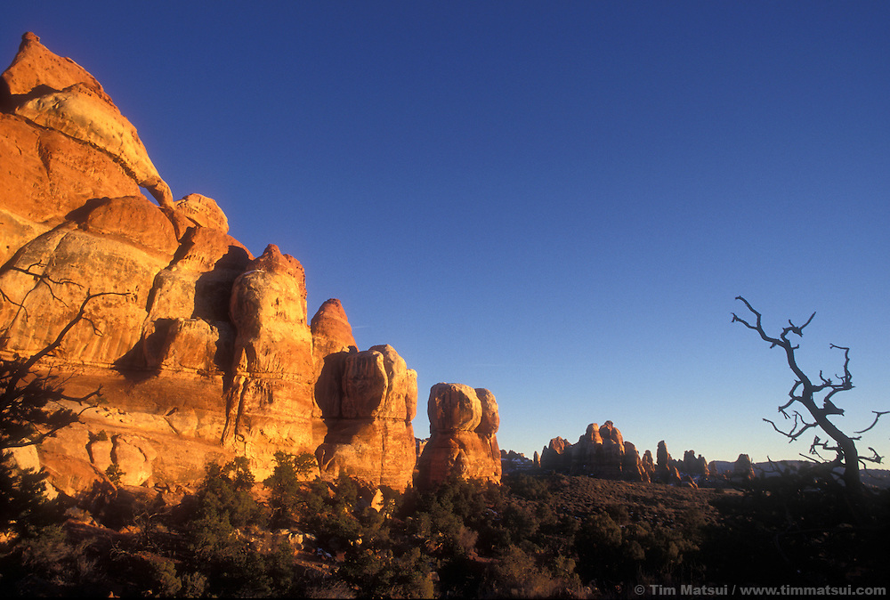 Sunset on the sandstone walls of Chesler Park, Needles District, Canyonlands National Park, Utah.