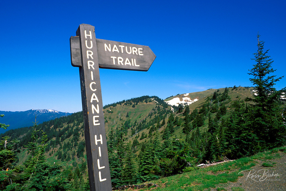 Trail sign at the start of the Hurricane Hill trail, Hurricane Ridge, Olympic National Park, Washington