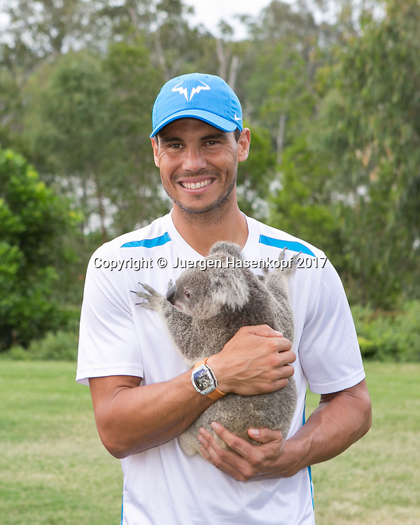 RAFAEL NADAL (ESP), Fototermin mit Koala<br /> <br /> Tennis - Brisbane International  2017 - ATP -  Pat Rafter Arena - Brisbane - QLD - Australia  - 2 January 2017. <br /> &copy; Juergen Hasenkopf