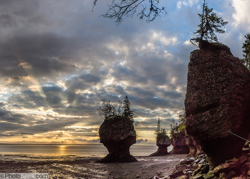 Sunrise. Visit Hopewell Rocks (Flowerpot Rocks) at Hopewell Cape, near Moncton, New Brunswick, Canada. Hopewell Rocks have one of most extreme tidal ranges in the world: up to 16 meters (52 feet) vertically. Waves and tides twice per day have eroded the base of the rocks faster than the tops, leaving arches and curiously shaped formations of dark sedimentary conglomerate and sandstone rock. For best photo lighting, go in morning (or spectacular sunrise) during the first low tide of the day, safe for 3 hours before low tide until 3 hours after. Walking the beach is easy until its southern end, where The Ledges, a ridge of slippery limestone, can be clambered over to reach Demoiselle Beach. Bay of Fundy has the highest tidal range in the world, due to a resonance of being just the right length (270 km) matching the gravitational pushing cycle of the Moon that causes the tides. Due to the bay's optimal size, the time it takes a large wave to go from the mouth of the bay to the inner shore and back is practically the same as the time from one high tide to the next. (See the effect of resonance by steadily pushing a long pan of water back and forth: an optimal pushing frequency for a given pan size will build up a high wave of water which sloshes out; but pushing too fast or too slow won't build up the big wave.) Two high tides occur per day, one when the ocean side of the Earth is nearest the Moon, and one on the side most distant from the Moon, about 12 hours and 25 minutes from one high tide to the next. The Bay of Fundy is on the Atlantic coast of North America, on the northeast end of the Gulf of Maine between the Canadian provinces of New Brunswick and Nova Scotia. Address: Hopewell Rocks Ocean Tidal Exploration Site (phone 506-734-3429), 131 Discovery Rd, Hopewell Cape, NB E4H 4Z5. The panorama was stitched from 6 overlapping photos.