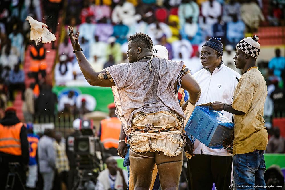 Balla Gaye 2 lässt im Stadion Demba Diop  vor dem mit 200 Millionen CFA, (ca. 315´000 USD) dotierten Kampf gegen Emeu Seen mehrere Tauben frei. Ein mystisches Ritual, welches Glück bringen soll. Nachdem er 2012 den über 15 Jahre ungeschlagenen Champion Yekini entthronte, wurde der Ringer, welcher mit wirklichen Namen Omar Sakko heisst, in Senegal zum Superstar.