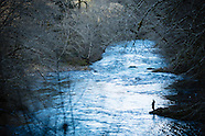 North Fork Trask River Steelhead Fly Fishing Photos - Images of Mike & Aimee Eaton - archive