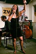 Vienna, Austria. Jazz singer Matilda Leko and Band at zwe..Andy Mayerl (bass), Nicola Stanosevic (piano).