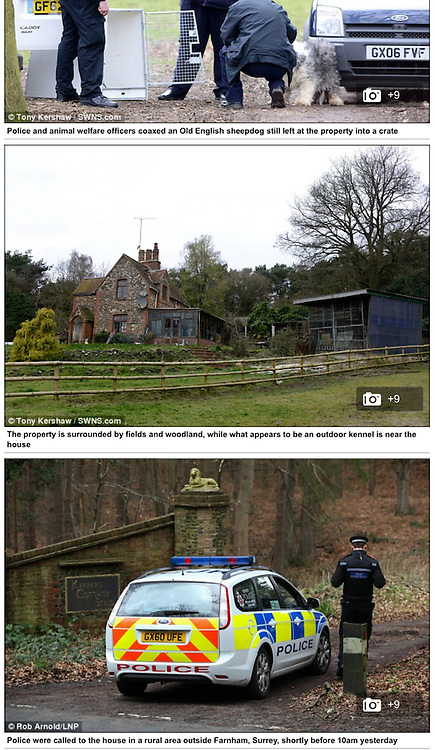 Farnham Murder - http://www.dailymail.co.uk/news/article-2566612/Pensioner-82-held-police-suspected-killing-spree-two-women-four-dogs-shot-dead.html