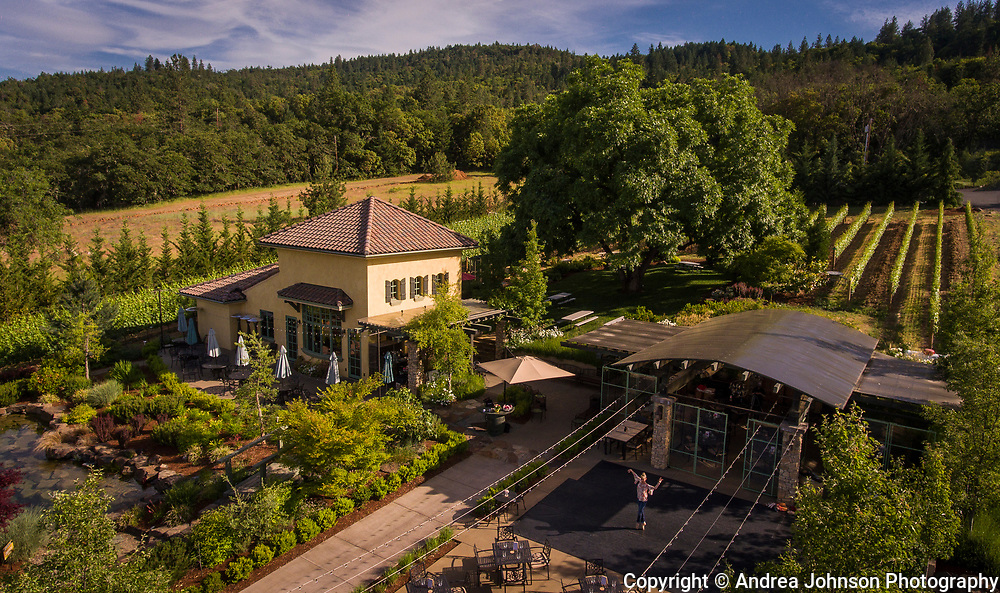 Aerial view over Dancin Vineyards near Jacksonville,  Rogue Valley AVA, Southern Oregon