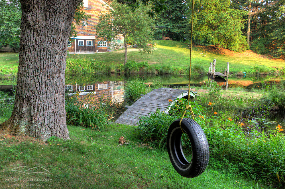 A tire swing next to a pond in Medfield, Massachusetts,