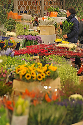 © Licensed to London News Pictures. 15/03/2012. London, UK. A woman purchases flowers from a stall. The Mothering Sunday sales rush is on for flower growers, suppliers, florists and retailers amongst the Flowers at the New Covent Garden Flower Market on March 15th 2012 in London, England. New Covent Garden Flower Market is London's premier wholesale market stocking the widest range of flowers, plants and foliage in the UK. The run up to Mothers' Day is crucial in the flower selling calendar as Mothers' Day sales are condensed into about four days making the market very busy. Traditionally, Mothering Sunday was a day when children, mainly daughters, who had gone to work as domestic servants, were given a day off to visit their mother and family. Today, Mother's Day is a time when children give flowers and cards to their mothers, and generally pamper them..  Photo credit : Stephen SImpson/LNP