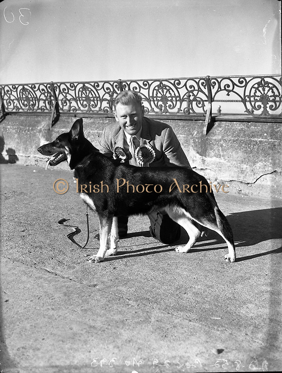 Mr William Murphy, Ballymoney Rd, Dervock, Co Antrim with his German Shepherd  'Koleen of Wolfhill' winner of Best in Show, Bray Dog Show.16/08/1952