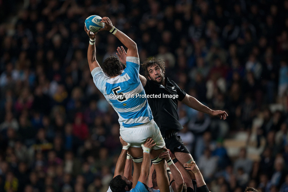 Patricio Albacete, All Blacks against Argentina, Estadio Unico de La Plata, La Plata, The Rugby Championship, 29th September