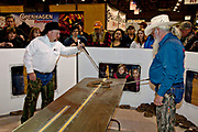 A Jaycee volunteer snake handlers prepare to measure a western diamondback rattlesnake as the crowd looks on during the 51st Annual Sweetwater Texas Rattlesnake Round-Up March 14, 2009 in Sweetwater, Texas. During the three-day event approximately 240,000 pounds of rattlesnake will be collected, milked and served to support charity.