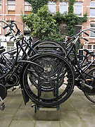 bicycles in bicycle rack