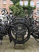 bicycles in bicycle rack