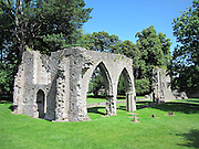 Armagh Friary, Armagh City, Armagh,