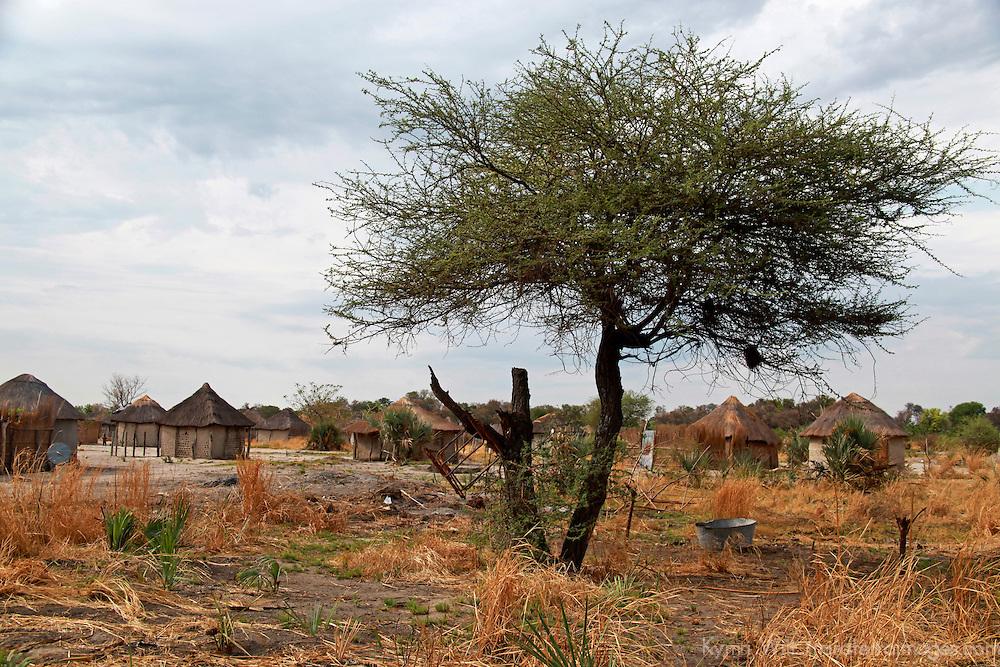 Africa, Botswana, Okavango Delta. Tree and village in the delta.