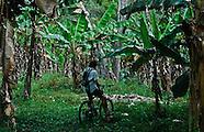 Mountain Biking-Belize
