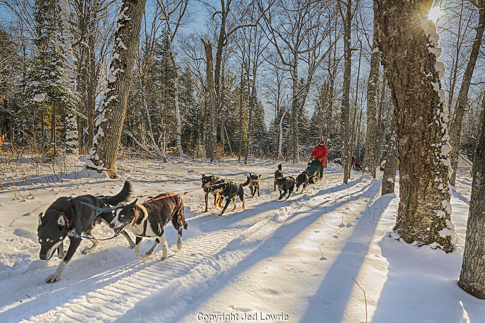 "One of the best Christmas gifts I've received yet. A chance to take a team of dogs out for the day. ""The Calm"" is aptly named due to a cacophony of excitement and anticipation prior to departure. At the very moment of embarkment the serenity begins."
