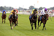 CHYNA (5) ridden by jockey Franny Norton and trained by Mick Channon wins The Jigsaw Sports Branding British EBF Novice Stakes over 5f (£15,000)at York Racecourse, York, United Kingdom on 13 July 2018. Picture by Mick Atkins.