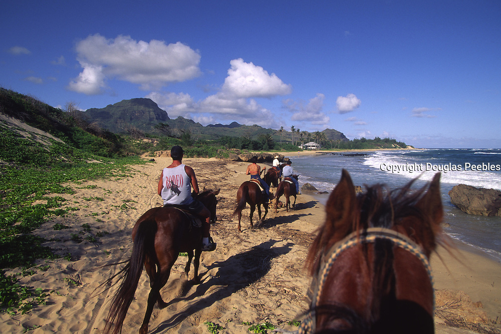 Horsebackriding, CJM Stables, Poipu, Kauai, Hawaii<br />
